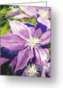 Morning Light Greeting Cards - Purple Clematis in Sunlight Greeting Card by Janis Grau