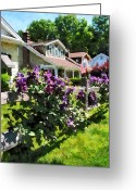 Suburbs Greeting Cards - Purple Clematis on Rustic Fence Greeting Card by Susan Savad