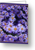 Unique Flowers Greeting Cards - Purple Daisy Abstract Greeting Card by Carol Groenen