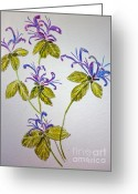 Pamela Meredith Greeting Cards - Purple Flowers Greeting Card by Pamela  Meredith