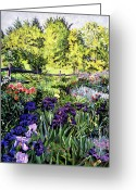 Flower Gardens Greeting Cards - Purple Garden Greeting Card by David Lloyd Glover