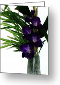 Purple Gladiola Greeting Cards - Purple Gladiola Greeting Card by Marsha Heiken