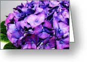 Purples Greeting Cards - Purple On Purple Greeting Card by Marsha Heiken