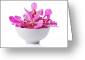 On White Greeting Cards - Purple Orchid Head Greeting Card by Atiketta Sangasaeng