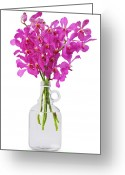 On White Greeting Cards - Purple Orchid In Bottle Greeting Card by Atiketta Sangasaeng