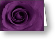 Purple Greeting Cards - Purple Rose of Artsy Greeting Card by Leonard Rosenfield