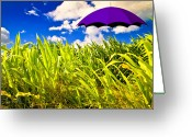 Sun Umbrella Greeting Cards - Purple Umbrella in a field of corn Greeting Card by Bob Orsillo