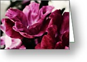 Purple Greeting Cards - Purple Wild Roses Greeting Card by Cathie Tyler