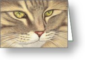 Dawn Jones Greeting Cards - Purrrfection Greeting Card by Dawn Jones