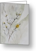 Pussy Willow Branches Greeting Cards - Pussy Willow Catkin Greeting Card by Isabella Kramer