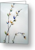 Pussy Willow Branches Greeting Cards - Pussy Willows Greeting Card by Joanne Smoley