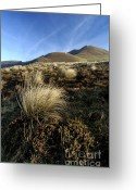 Clump Greeting Cards - Puys Mareilh et de lAngle. Auvergne. France Greeting Card by Bernard Jaubert