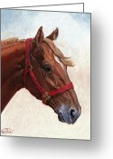 Four Corners Greeting Cards - Quarter Horse Greeting Card by Randy Follis