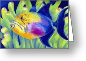 Reef Fish Greeting Cards - Queen Triggerfish Greeting Card by Stephen Anderson