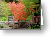 Debbie Johnson Greeting Cards - Quiet Contemplation Greeting Card by Deborah  Crew-Johnson
