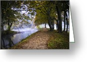 Mist Posters Greeting Cards Greeting Cards - Quiet Moments Greeting Card by Steve Buckenberger