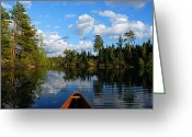 Nature Landscape Greeting Cards - Quiet Paddle Greeting Card by Larry Ricker