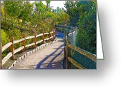 Socal Greeting Cards - Quiet Path Along the Lagoon Greeting Card by Chuck Staley