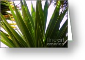 Guava Greeting Cards - Quito Foliage Greeting Card by Al Bourassa