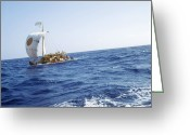 Thor Photo Greeting Cards - Ra-2 Papyrus Boat In The Atlantic Ocean Greeting Card by Ria Novosti