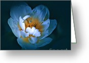 Fine_art Greeting Cards - Radiance Greeting Card by Gerlinde Keating - Keating Associates Inc