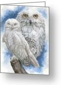 Bird Of Prey Mixed Media Greeting Cards - Radiant Greeting Card by Barbara Keith