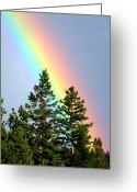 Biblical Greeting Cards - Radiant Rainbow Greeting Card by Will Borden