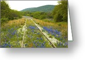Railroad Tracks Greeting Cards - Railroad Blues Greeting Card by Robert Anschutz