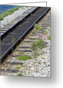 Skagway Greeting Cards - Railroad to Yukon Greeting Card by Sophie Vigneault