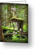 Conservative Greeting Cards - Rain Forest Telephone Booth Greeting Card by Tanya  Searcy