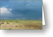 Estephy Sabin Figueroa Greeting Cards - Rain on the Prairie Greeting Card by Estephy Sabin Figueroa