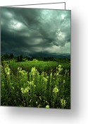 Rain Storms Greeting Cards - Rain Greeting Card by Phil Koch