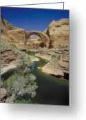 Origin Greeting Cards - Rainbow Bridge Upstream Greeting Card by Jerry McElroy