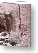 Christopher Gaston Greeting Cards - Rainbow Falls Smoky Mountain National Park -- Painted Photo. Greeting Card by Christopher Gaston
