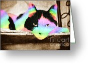 Gaze Mixed Media Greeting Cards - Rainbow Kitty Abstract Greeting Card by Andee Photography