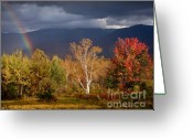 Grafton County Greeting Cards - Rainbow on LaFayette Greeting Card by Susan Cole Kelly