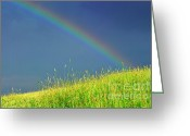 Stormy Sky Greeting Cards - Rainbow over Pasture Field Greeting Card by Thomas R Fletcher