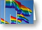 Gay Rights Greeting Cards - Rainbow Pride Flags Greeting Card by Stuart Dee