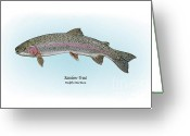Game Drawings Greeting Cards - Rainbow Trout Greeting Card by Ralph Martens