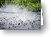 Flood Plain Greeting Cards - Raindrops Falling On Water Greeting Card by Dr Keith Wheeler