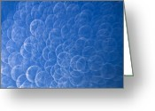 Blue Sky Photo Greeting Cards - Raindrops on Window Greeting Card by Silke Magino