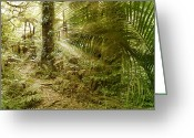 Ferns Greeting Cards - Rainforest Greeting Card by Les Cunliffe