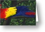 Amazon Parrot Greeting Cards - Rainforest Parrot Greeting Card by JoAnn Wheeler
