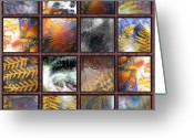 Forestry Glass Art Greeting Cards - Rainforest Remnants Greeting Card by Sarah King