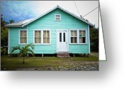 Flooding Greeting Cards - Raised Home in the Tropics Greeting Card by Inti St. Clair
