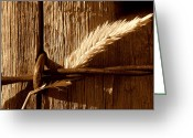 Barbed Wire Fences Photo Greeting Cards - Ranch Life.. Greeting Card by Al  Swasey