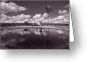 Scrub Greeting Cards - Ranch Pond New Mexico Greeting Card by Steve Gadomski
