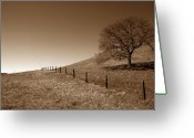 Landscapes Framed Prints Greeting Cards - Ranch Road Oak Greeting Card by Kathy Yates