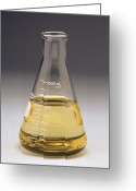 Rape Greeting Cards - Rape Seed Oil In Laboratory Flask Greeting Card by Kaj R. Svensson