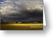 Crops Greeting Cards - Rapefield Under Dark Sky Greeting Card by Heiko Koehrer-Wagner